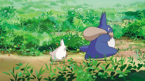 9 حقائق عن جاري توتورو My Neighbor Totoro معلومات جميلة لم تكن تعرفها عن أجمل أفلام هاياو ميازاكي جاري توتورو فيلم أنمي الرسوم الكرتونية
