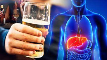ما يحدث لجسمك عندما تتوقف عن شرب الكحول لمدة 28 يوم لماذا يجب عليك التوقف عن شرب المشروبات الكحولية شرب النبيذ صحة الكبد الكحوليات